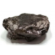 Anthracite Coal rock specimens