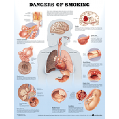 the danger of smoking essay Free essay: the dangers of smoking smoking has a very negative impact on the health of people and causes serious long-term and short-term health problems for.