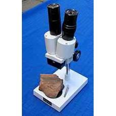Microscope, Stereo type