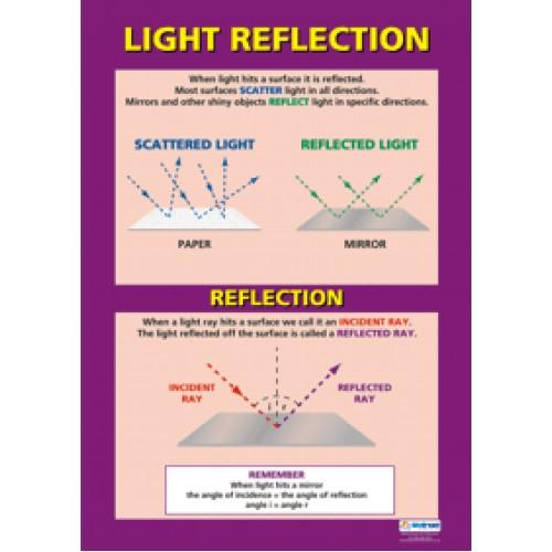 Chart Light Reflection