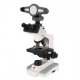 Microscope Biological Trinocular Head B1-253SP with Camera